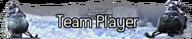Andrew Ramirez 192px-Team_Player_title_MW2