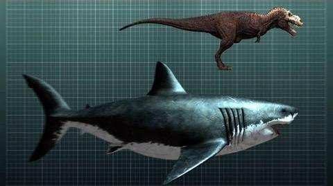 The Nightmarish Megalodon Sharkzilla -- Shark Week 2012 (02:38)