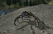 Cyrodillic mudcrab