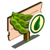 Organic Soybean Mastery Sign-icon