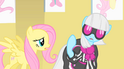 Fluttershy trying to talk to Photo Finish S1E20