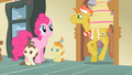 Pinkie Pie here comes Mr. Cake S2E13.png