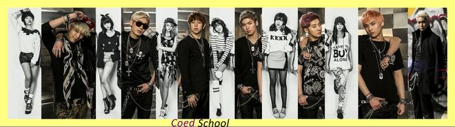 Co-Ed School