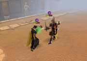 Duel arena fight