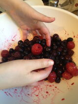 Prepping berries