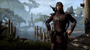 Bosmer (Online)