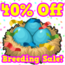 Birthday 2 breeding sale hud