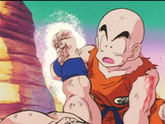 Dbz33-24