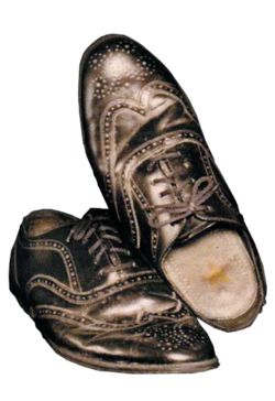 Richard Nixson's Shoes.