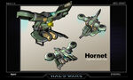 Hornet concept HW