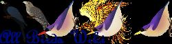 All Birds Wiki Wiki-wordmark
