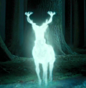 "David Reed-Brown ""The Patronus is Real"""