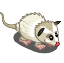 White Opossum-icon.png
