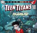 Teen Titans: Year One Vol 1 2