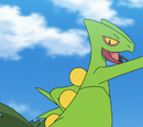 Ash's Sceptile