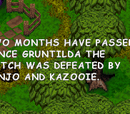 Banjo-Kazooie: Grunty's Revenge