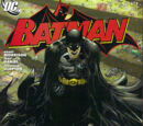 Batman Vol 1 673