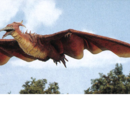 Rodan