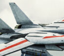 F-14D &quot;VF-1J &amp; VF-1S Valkyrie&quot;