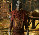 Neloth (Dragonborn)