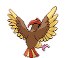 Pidgeotto