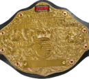 Extreme Answers Wrestling World Heavyweight Championship