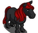 Black Cherry Pony