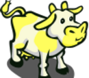 Yellow Patch Cow