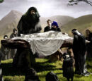 Funeral of Albus Dumbledore