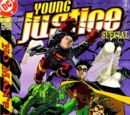 Young Justice Special Vol 1 1