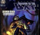 Batman: Shadow of the Bat Vol 1 39
