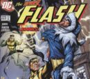 Flash Vol 2 223