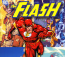 The Flash: Rogue War