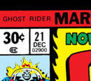 Ghost Rider Vol 2 21