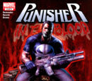 Punisher: In the Blood Vol 1 2