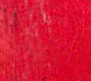 Macworld