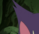 BW046: Purrloin: Sweet or Sneaky?