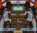 Johto Gyms