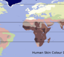 Human skin color