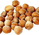 Hazelnut