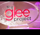 Glee-ality (Season 2)