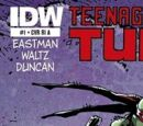 Teenage Mutant Ninja Turtles issue 1 (IDW)