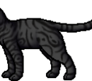 Darkstripe