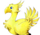 Chocobo/Types