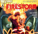 Fury of Firestorm Vol 1 3