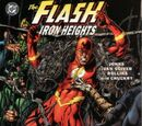 Flash: Iron Heights