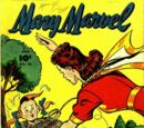 Mary Marvel Vol 1 25