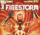 Fury of Firestorm Vol 1 1
