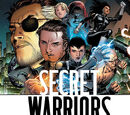 Secret Warriors Vol 1