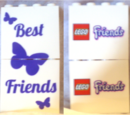 6006139 Friends Promotional Bricks